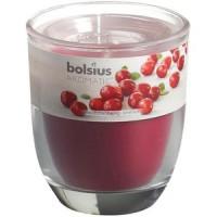 Lõhnaküünal Bolsius 23h (jõhvikas)